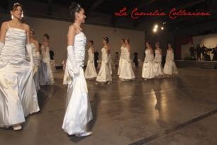 debuttanti - la camelia collezioni - 14