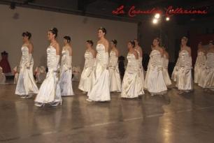 debuttanti - la camelia collezioni - 15
