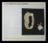 castello di belgioioso - anno 1996 - 3 - la malizia sotto la veletta - la camelia collezioni
