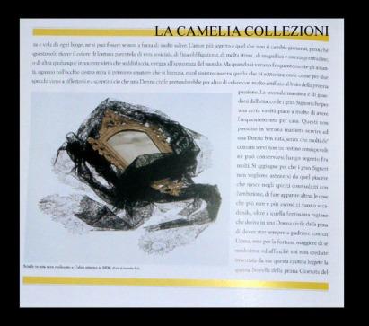 castello di belgioioso - anno 1996 - 4 - la malizia sotto la veletta - la camelia collezioni