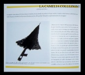 castello di belgioioso - anno 1996 - 5 - la malizia sotto la veletta - la camelia collezioni