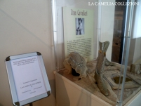 mostra scarpe dalla belle epoque alla grande guerra - comune di vigevano 3 - la camelia collezioni