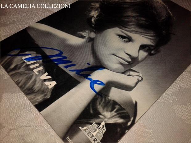 milva autografo - la camelia collezioni