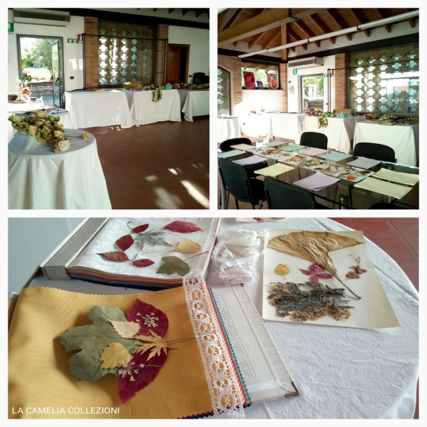 Eventi botanica  - la camelia collezioni