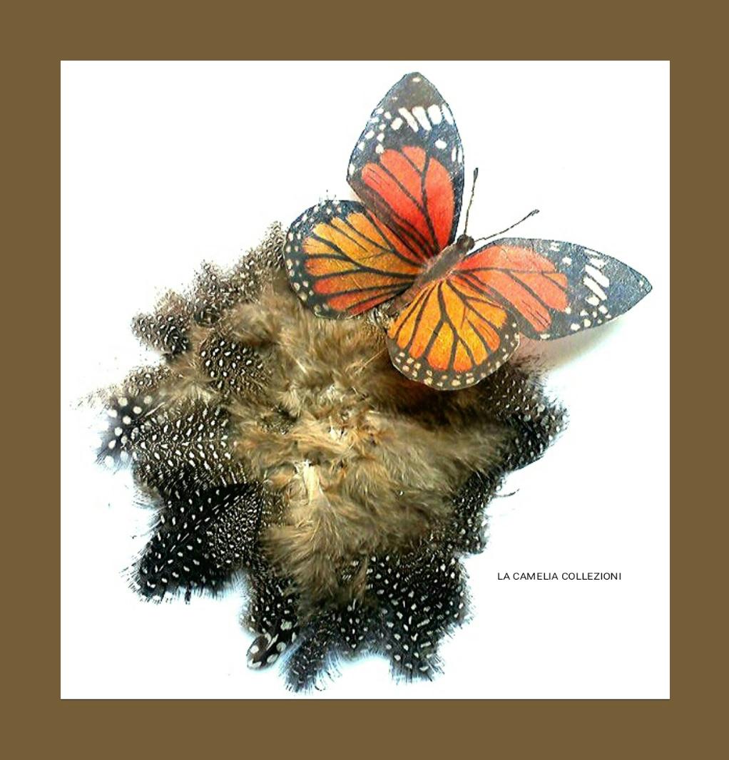 Piuma ornamentale Maron con farfalla- la camelia collezioni
