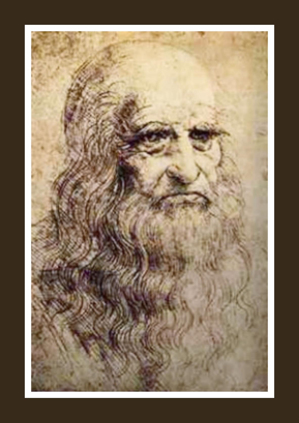 Leonardo da Vinci - la camelia collezioni